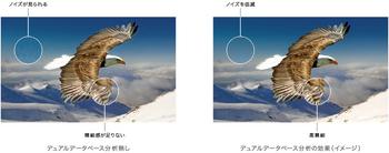 KJ-Z9D_03.jpg